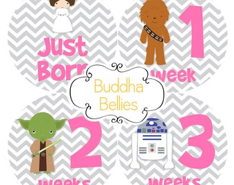 Star Wars Baby Fans Celebrate with 16 Baby Month Stickers Girl Baby Shower Baby Stickers Nursery Monthly Baby Stickers