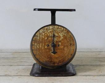 Antique Scale 24 Pound Landers Frary & Clark Kitchen Scale Black Vtg Scale