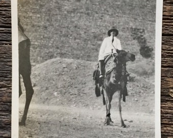 Original Antique Photograph Seeing the Pyramids 1922