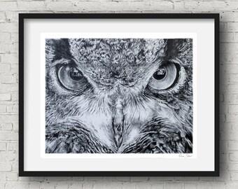 Animal poster Owl Art print  Owl Illustration animal Wall Decor