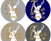 ON SALE Baby Monthly Milestone Growth Stickers Gold Glitter Navy Grey Tan Tribal Deer Arrows Nursery Theme MS809 Baby Shower Gift Photo Prop