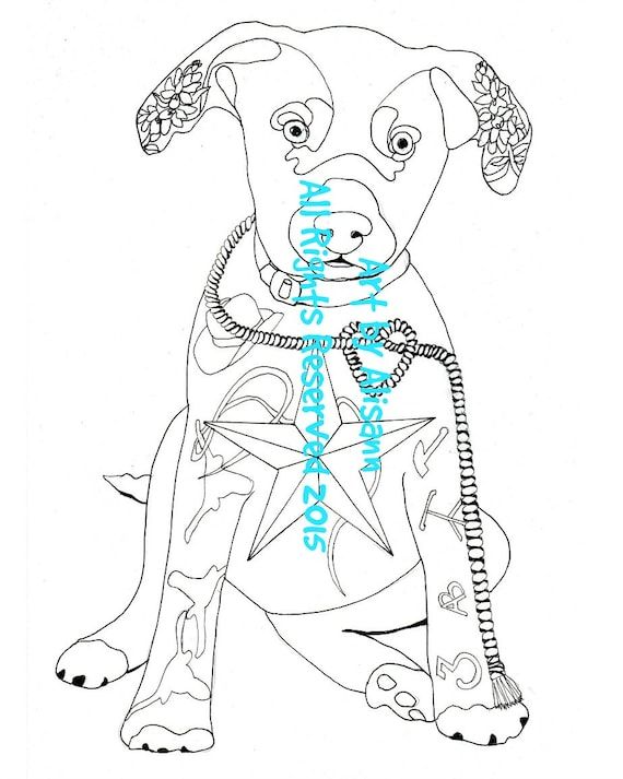 blue lacy hound texas lacy coloring page love dogs