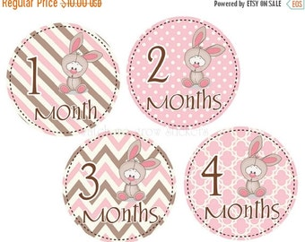 Sale Baby Month Stickers Baby Monthly Stickers Baby Shower Gift Bunny Month Stickers Girl