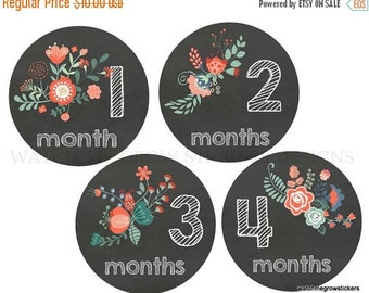 Sale Monthly Baby Stickers Baby Month Stickers Baby Girl Monthly Stickers Milestone Chalkboard