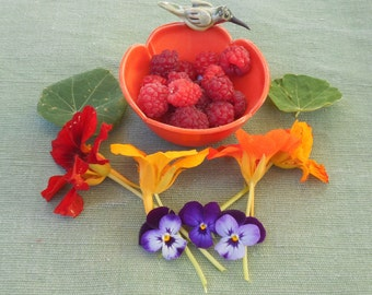 Hummingbird on Poppy Bowl, Ring Bowl, Berry Bowl, Mother's Day