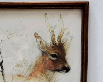Vintage Deer Stag Antlers Print in wood frame
