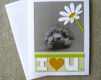 Hedgehog Daisy card/ cute card/ mother's day card/ anniversary card/ may day card/ spring/ cute hedgehog/ card for hedgehog owners