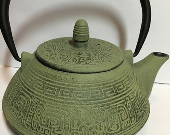 Teapot cast iron Japanese kettle, beautiful enamel lined with infuser FREE SHIPPING