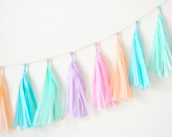 Pastel Rainbow Tissue Tassel Garland - One Stylish Party