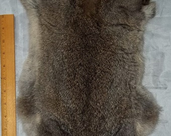 "Genuine Real Natural Rabbit Skin/Pelt/Hide/Fur - Taxidermy, Leathercrafters ,Crafts, Rendezvous, Tanned, ""NEW"""