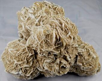 Huge Desert Rose Selenite / Gypsum Cluster 5lbs