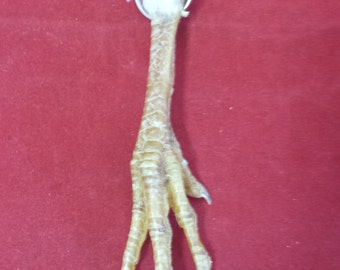 Taxidermy Light Chicken Foot Key Chain///keychain-talisman-voodoo-witch-farmer
