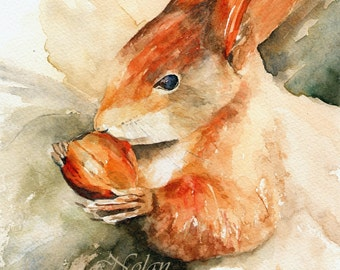 RED SQUIRREL mounted watercolour print by Ruth Nolan