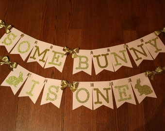 Some Bunny Is One Birthday Banner