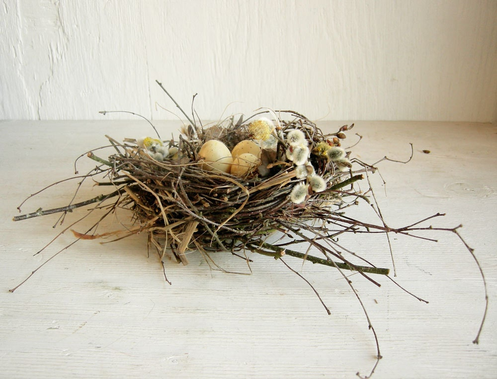 rustic home pussy willow decor bird nest with eggs rustic