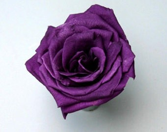 Preserved* Purple Roses, Preserved  Roses, Roses for Bouquet, Prom Roses, Preserved Rose Bouquet  Simply Beautiful !