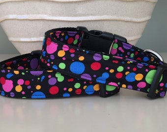 Dog Collar / Bright Colorful Dots on Black