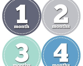 Monthly Baby Stickers Baby Boy Stickers Baby Month Milestone Stickers Baby Month Stickers Month to Month Bodysuit Stickers Shower Gifts 061