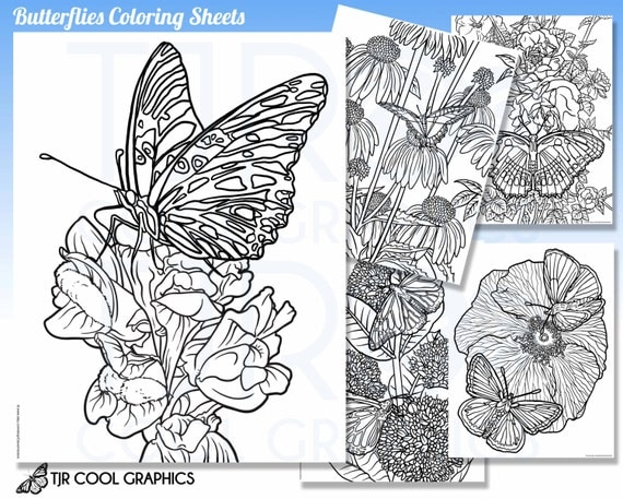 realistic butterfly coloring pages - butterflies coloring sheets adult digital realistic jpg