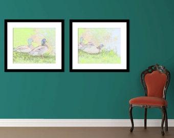 Set of 2 Duck Sketchy prints - Fine art - Duck office art, Duck photography, digital download,