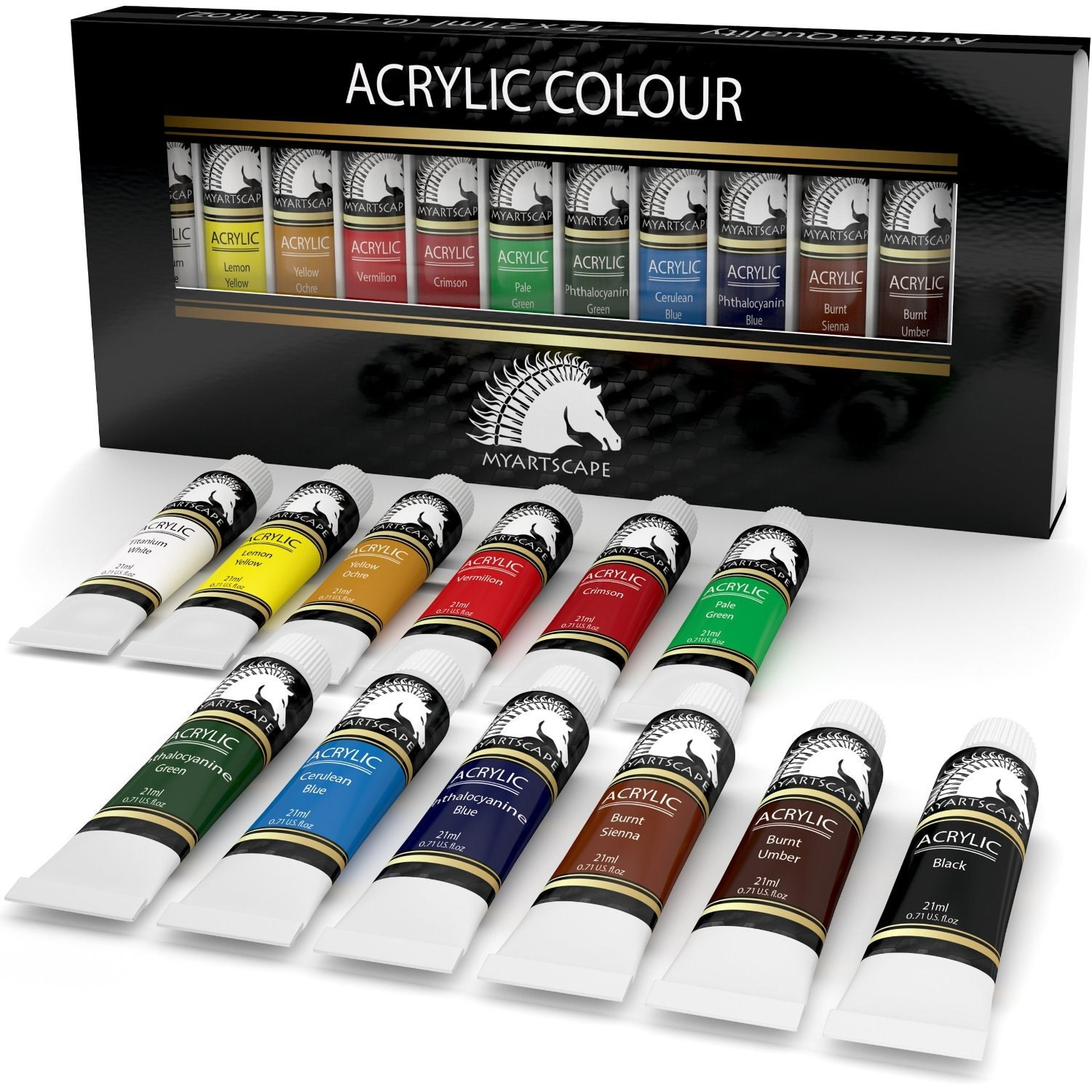 12x21ml acrylic paint set artist quality paints for for Acrylic mural paint supplies