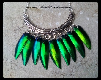 Bohemian Tribal Green Taxidermy Elytra Beetle Wings Pendant Necklace