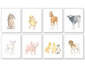 Farm Animal Print Barn Animal Art Nursery Art Children Art Pig Piglet Horse Pony Chicken Chick Sheep Lamb Bunny Goat Cow Calf Ducks Set of 8