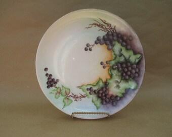 Hutschenreuther Selb Bavaria Handpainted Plate