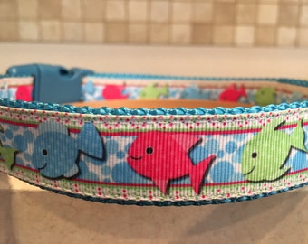 """Schoolin' Around dog collar 1"""" size large and medium and Optional Matching Leash"""