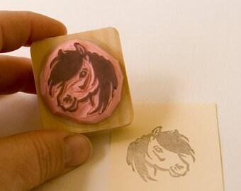 Ref. 101 Little shetland pony portrait / Ref. 101 Portrait de poney shetland