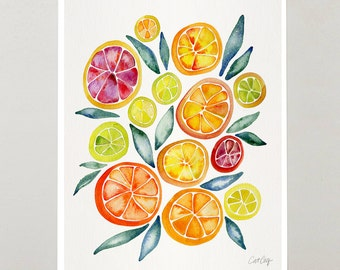Citrus Watercolor – Signed Watercolor Painting Print by CatCoq. Artwork Home Decor, Kitchen Wall Art, Grapefruit, Citrus, Cheerful, Happy
