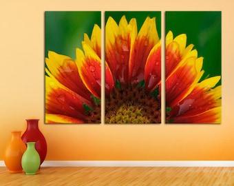 3 Panel  Canvas Split, Yellow Orange Gerber Daisy Flower in Sunlight, Triptych  Canvas, Interior design, Room Decoration,interior design.