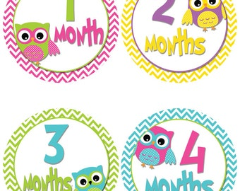 Owl Themed Baby Month Milestone Stickers - Baby Onesie Stickers - First Year Baby Stickers (522)