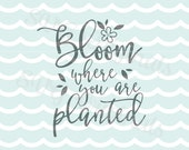 Spring Bloom SVG Bloom where you are planted SVG Vector file. So many uses! Cricut Explore and more.  Hello Spring Flowers Bloom SVG