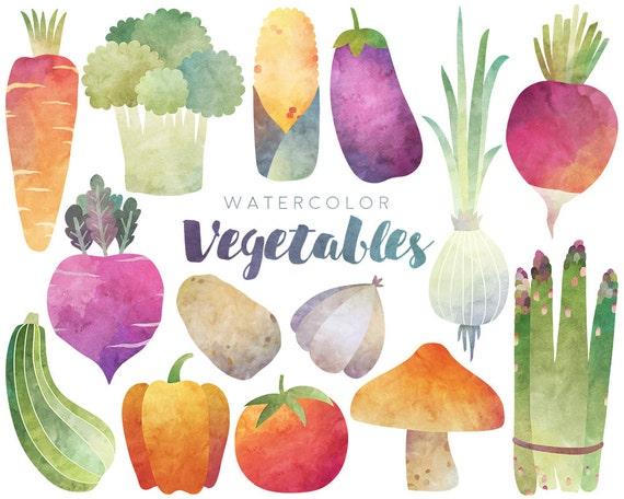 Watercolor Vegetables Clipart 300 DPI Watercolor Clip Art