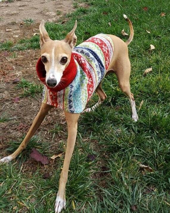 Italian Greyhound Clothes Ugly Christmas
