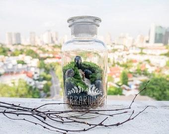 Moss Terrarium: Let's go for a hike
