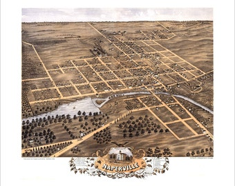 """Naperville, Illinois in 1869 Panoramic Bird's Eye View Map by A. Ruger 19x17"""" Reproduction"""