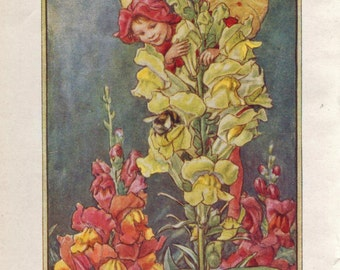Flower Fairies: THE SNAPDRAGON FAIRY Vintage Print c1930 by Cicely Mary Barker
