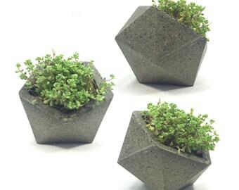 Geometric Icosahedron Concrete Planter // Original Size // with or without drainage