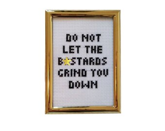 Do Not Let the B*stards Grind You Down framed cross stitch