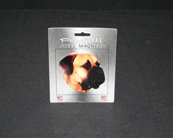 Magnet Bull Mastiff