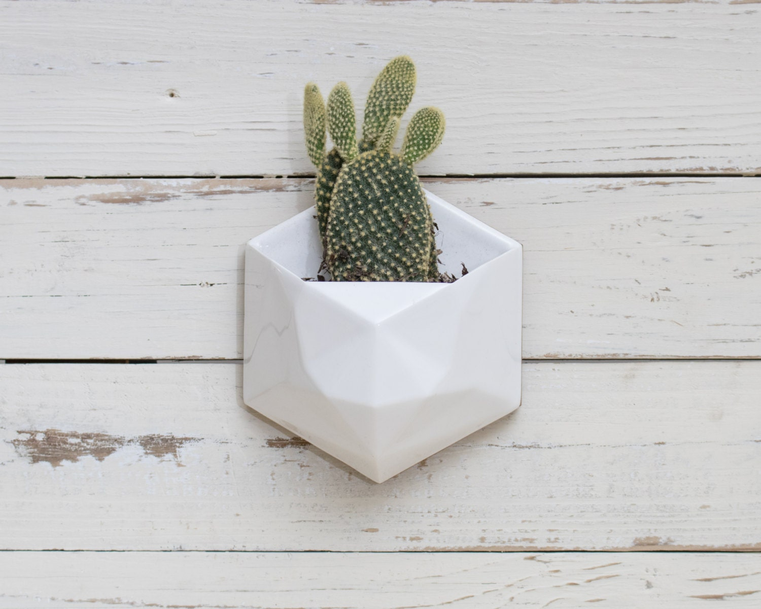 White geometric hexagon ceramic wall hanging planter with wood for Blumentopf wand