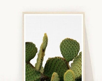 Desert Art, Cacti print, Cactus Art Print, Printable Art, Wall Decor, Cactus Wall Art, Instant Download