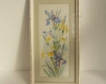 Original vintage watercolour painting, irises, I.B. Elmer