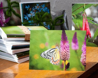 5pk, Photographic Greeting Cards - Blank