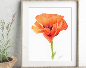 Watercolor Flower Illustration of Red Poppy Painting, Botanical Wall Art Print
