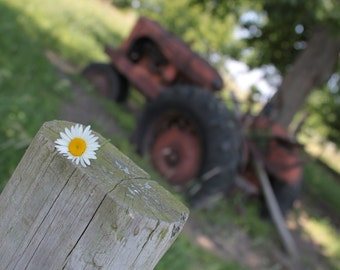 Abandoned Tractor - Landscape photography -  Wall Art -  Nature Photography -  Farm House Photography