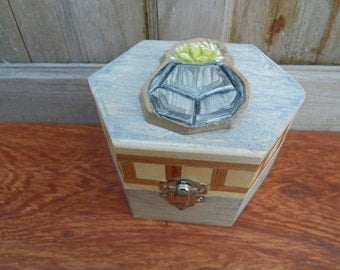 Wood keepsake box with succulent hand painted embellisment