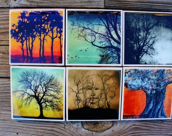 Tree Art Coasters